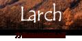 カラマツ、唐松、落葉松などのマツ科カラマツ属の針葉樹について