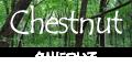 栗、どんぐり、椎(シイ)などのブナ科クリ属の広葉樹について