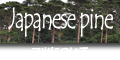 赤松(アカマツ)や黒松(クロマツ)などマツ科マツ属の針葉樹について