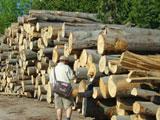 木材コンシェルジュ